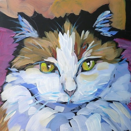 March 3- Callie-cat