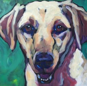 Gus by Kat Corrigan